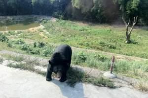 永川-乐和乐都主题公园渡假群——野生动物世界、娱乐天堂一日游