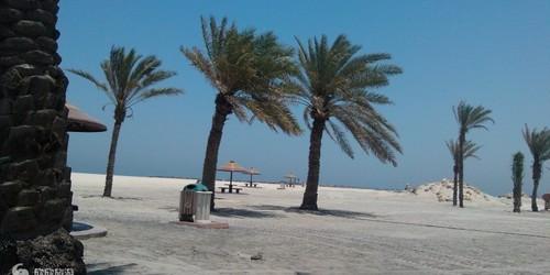 朱梅勒海滩公园