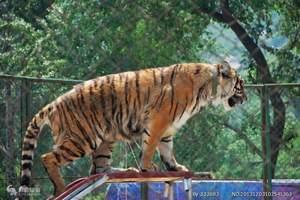 苏州到常州淹城野生动物园一日游