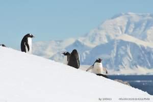 南极旅游推荐季节_北京到南极旅游需要多少钱—南极圈探险17日