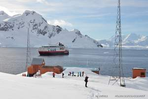 南极旅游要花多少钱:南极洲南乔治亚航程21日_南极洲旅游报价