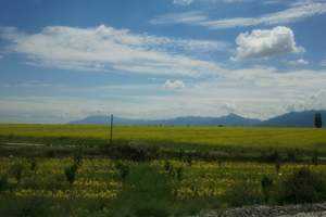 新疆南山牧场一日游/感受哈萨克风情/离城市最近的草原