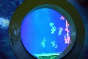 【秦皇岛圣蓝海洋公园】圣蓝海洋皇家公园门票