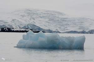 南极三岛包船20日游-畅游南设特兰群岛、南乔治亚岛、南极半岛
