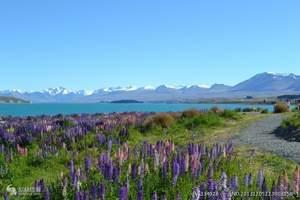 东莞出发_新西兰南北岛8天纯净之旅_新西兰旅游攻略及报价