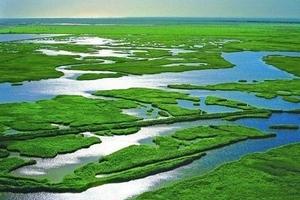 宁波企业学校组团旅游---莫干山下渚湖湿地避暑二日_清凉线