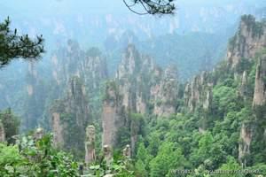 张家界国家森林公园+天门山3日跟团游(住景区山顶)