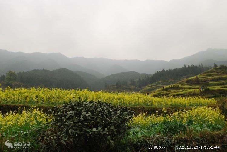 北京到婺源旅游:江西婺源、江岭、景德镇 双卧4日游