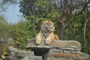 湖南省生态动物园 动物园门票价格 动物园儿童收费