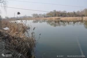 桓台马踏湖