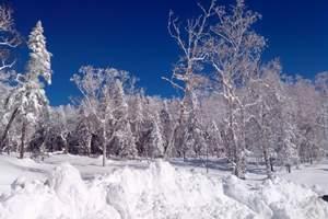 哈尔滨到亚布力滑雪+雪乡纯玩两日游(一价全包无自费、无购物)