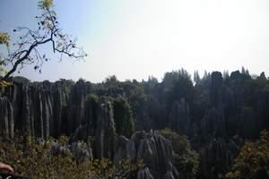 北京到昆明旅游-昆明九乡、陆良彩色沙林、罗平油菜花双飞6日