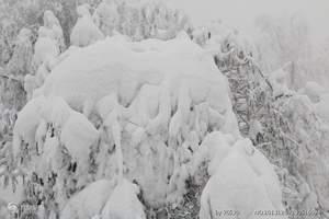 清明节西岭雪山 西岭雪山清明节价格 西岭雪山二日旅游