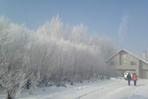 冬天大连到吉林万科滑雪_雾凇岛-松花湖冬捕纯玩双卧五星4日游