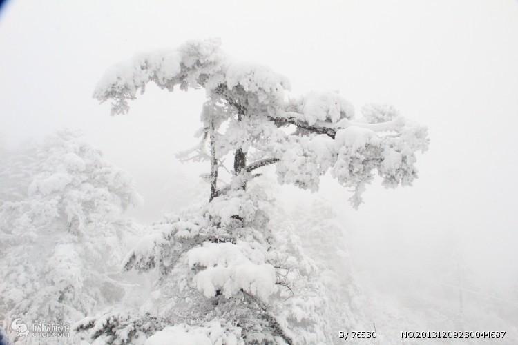 西岭雪山图片