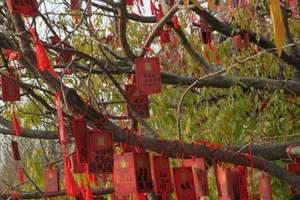 保定到北京香山旅游  北京香一日游