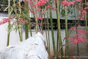 棠樾牌坊群