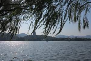 杭州到富阳新沙岛度假村桑果采摘一日游|杭州附近农家乐线路