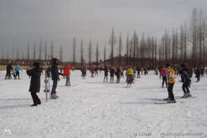 金佛山新年祈福滑雪、天星小镇、东温泉、刨猪汤纯玩二日游