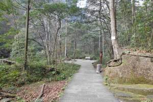 八大公山自然保护区