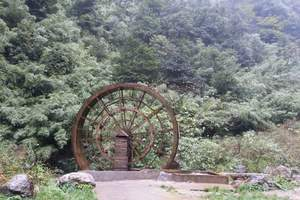 重庆一日游  重庆周边旅游  重庆到南川神龙峡休闲一日游