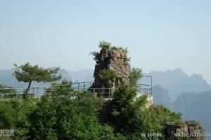 山西-王莽岭