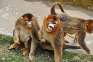 威海龙之旅--威海刘公岛、神雕山野生动物园二日游
