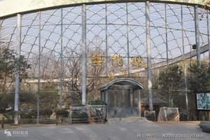 带孩子旅游  泰安到济南省科技馆 芙蓉街、济南动物园一日游