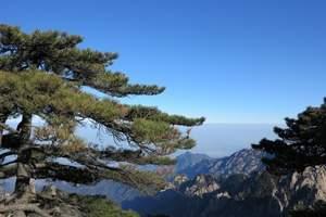 扬州到芙蓉谷、宏村、西递+石林、关麓、 黟县古城、屯溪三日游