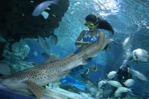 北京海底世界一日游 海底世界简介  儿童团
