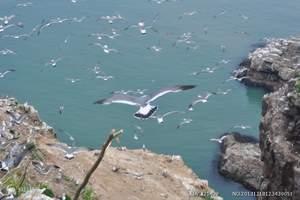 泰安去乳山银滩、海驴岛、威海海洋世界大巴纯玩三日 含海鲜大锅