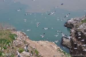 青岛海底世界一日游|栈桥 海边 踏浪|青岛旅游景点攻略