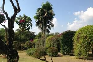 石家庄到云南昆明、西双版纳、中缅边境双飞6日游 去西双版纳玩