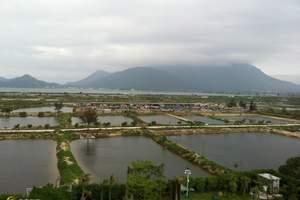 深圳南澳旅游海滨中心