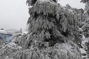 2013年庐山第一场雪