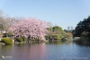 合肥到日本旅游 日本本州六日赏樱经典之旅