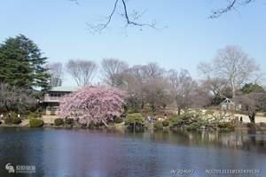 9月份青岛到日本旅游团  日本本州双飞6天、当地3-4星酒店