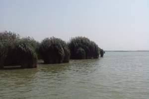 沙湖/沙坡头/西部影视城三日游