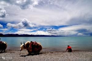 淄博山水旅游暑假到西藏拉萨、纳木错、日喀则单卧双飞9日游