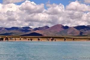 淄博到西藏拉萨、纳木错、林芝四飞8日游 淄博到拉萨 林芝旅游