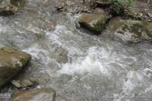 兰州周边游|兰州到吐鲁沟国家森林公园一日游