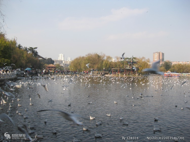 翠湖公园图片