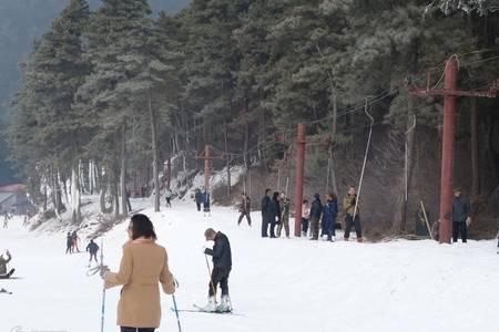 金佛山+天星小镇一日游(滑雪赏雪)_重庆渝之旅_渝之旅官网