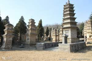 西安到兵马俑、法门寺、延安壶口、少林寺、龙门石窟六晚七日游