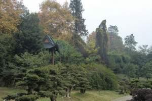 西安周边去户县太平森林公园一日游|仅限独立成团 天天发