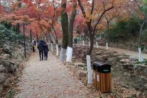 杭州到临安太湖源+指南村赏红枫+白沙土家饭1日游 周末看红叶