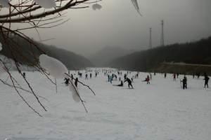 南阳出发到南召猿人山滑雪一日游  天天发团