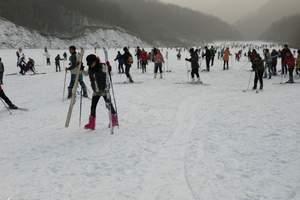 郑州到哈尔滨冰灯雪雕—亚布力激情滑雪—中国童话雪乡纯玩七日游