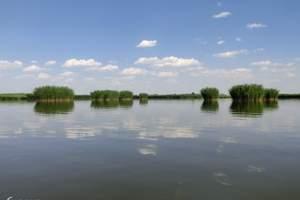 【沙湖、镇北堡影城一日游】市内免费接送 含沙湖大船票