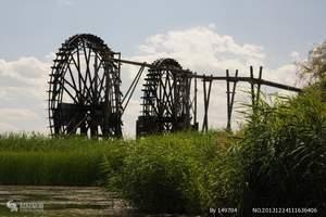 宁夏旅游:银川鸣翠湖国家湿地公园/上海庙欢乐大草原一日游